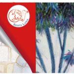 romanzi curati sesta luna - edizioni allaround